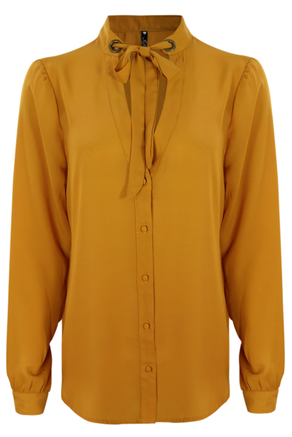 Mustard Sheer Blouse With Tie Front